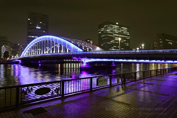 隅田川テラスより永代橋の全景を望む
