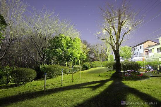 夜景スポット ふじみ公園 園内の雰囲気