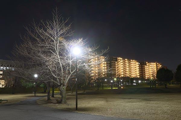 若葉台ワーズワースの丘(南西)方向の夜景を望む
