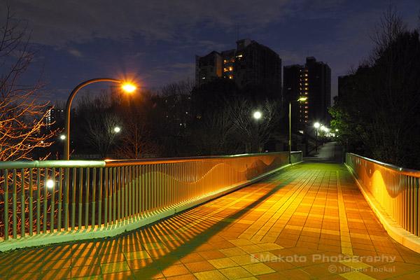 夜景スポット 辛夷歩道橋の雰囲気