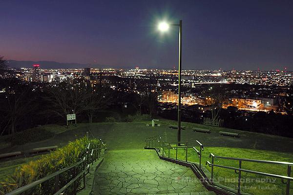 都立桜ヶ丘公園 ゆうひの丘 階段付近の雰囲気