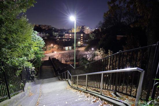 展望スペースへと続く階段付近の雰囲気