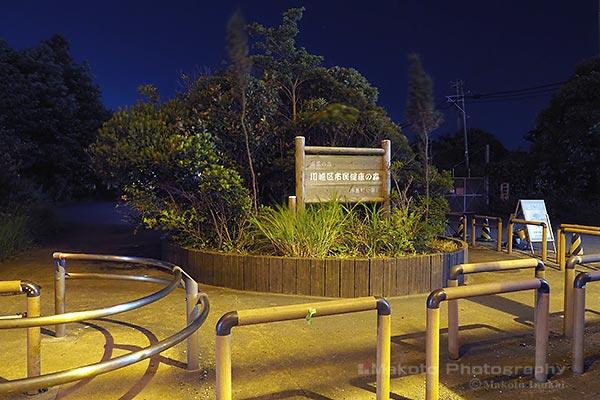 夜景スポット 浮島町公園入口の雰囲気