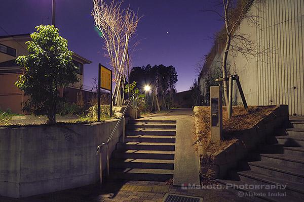 堀之内東山やまざくらの丘緑地 入口付近の雰囲気