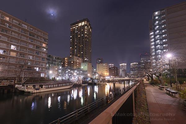 遊歩道より西仲橋(南東)方向の夜景を望む