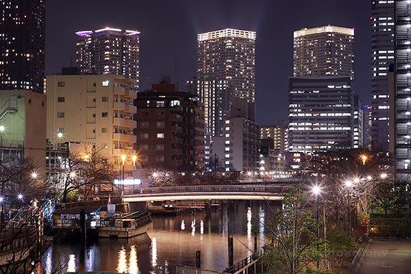 遊歩道より西仲橋(南東)方向の夜景を望遠で捉える方向の夜景を望む