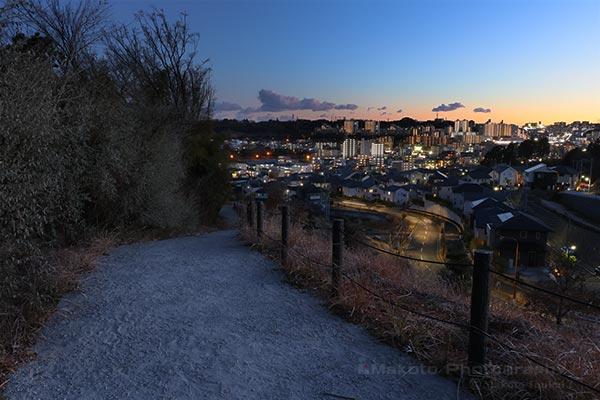 夜景スポット 堀之内東山そよかぜの道の雰囲気
